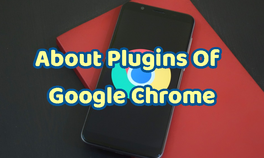 About Plugins Of Google Chrome