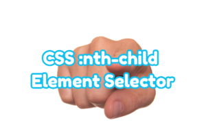 CSS :nth-child Element Selector